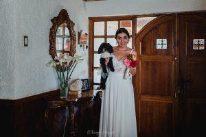 MatriNN 44 300x200 - Tu Perro como invitado de honor a tu matrimonio.