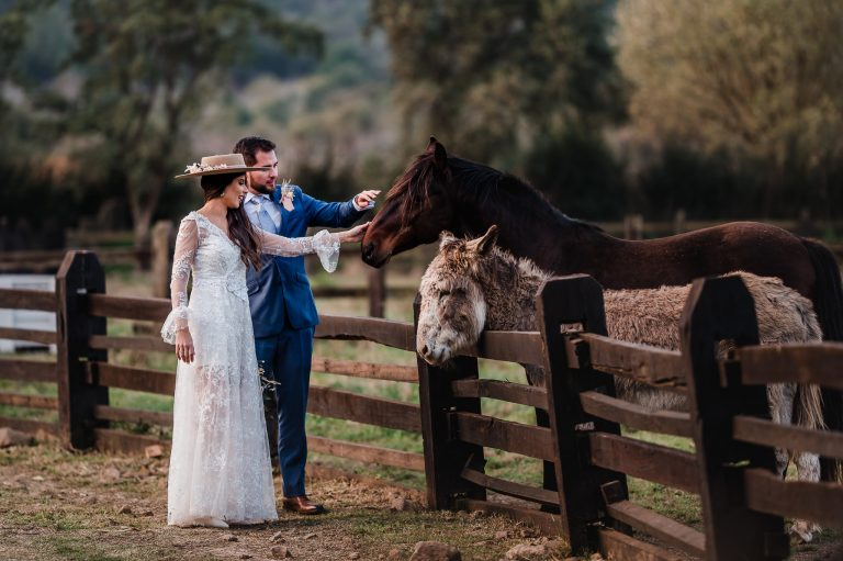 matrimonio en viña las araucarias